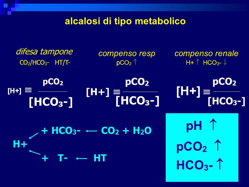 [H+]  pH  pCO2  HCO3-  [HCO3-] alcalosi di tipo metabolico pCO2